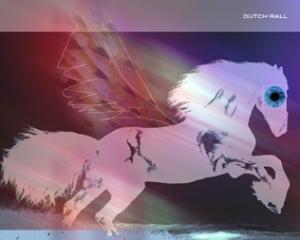 black_horse_running-316